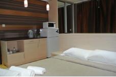 Изображение 4 - 1-комнат. отель в Киеве, Голосеевский переулок 5