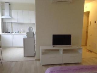 1-комнатная квартира в городе Киев, Бульвар Леси Украинки 24
